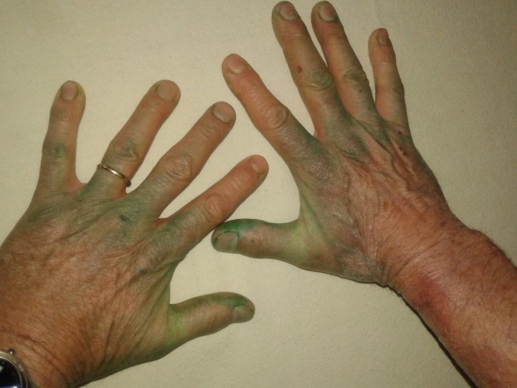 La main verte le paradis normand chambres d 39 h tes - Avoir la main verte ...